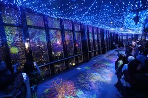 光影交織的「日本夏日」 東京鐵塔彩燈、光雕投影活動(影片)