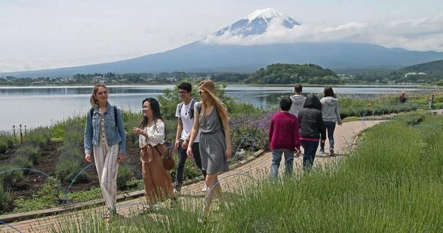 富士河口湖「香草節」登場 花香瀰漫宣告初夏來臨