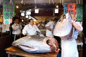 1億9320萬日圓的黑鮪魚 上演分解秀引來民眾鼓掌歡呼(影片)