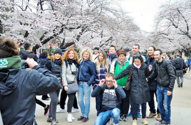 東京都政府要求自我約束賞櫻宴 上野公園及隅田川等成對象