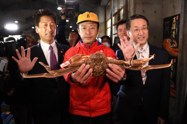 鳥取港舉行楚蟹首次競標 1隻500萬圓大幅超越金氏紀錄
