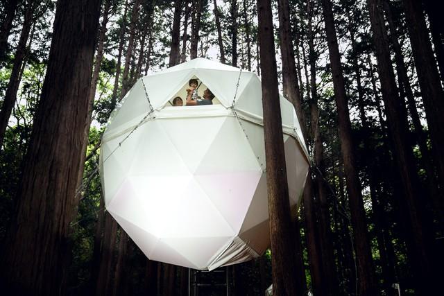 森林中漂浮的球體…… 置身自然美景「擺脫人情束縛」