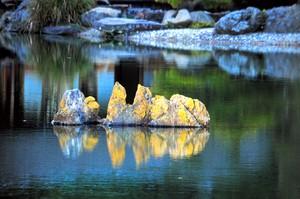 香川·栗林公園「發光岩」現蹤 每年僅亮2次成話題(影片)
