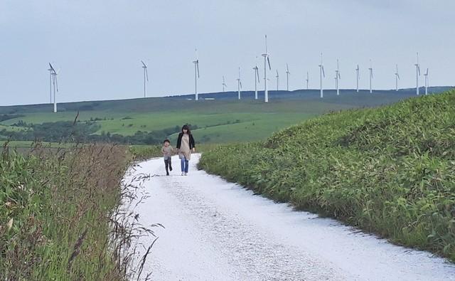 漫步「白色小路」 日本最北丘陵地全新導覽行程開跑