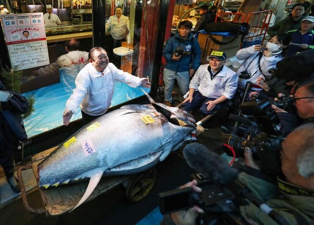 豐洲市場令和首次新年競拍 最高價黑鮪魚1億9320萬日圓結標