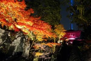 滋賀·石山寺「可惜夜紅葉」 岩石、紅葉及多寶塔譜美景(影片)
