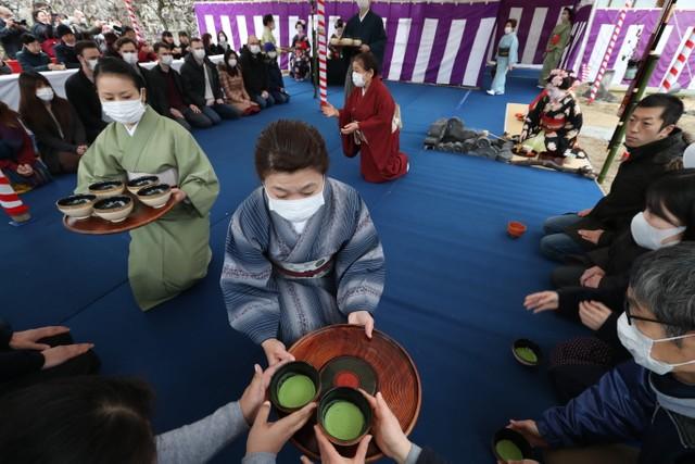 北野天滿宮取消藝舞妓奉茶活動 改由女將配戴口罩款待