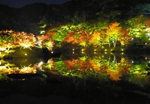 香川·栗林公園舉行紅葉點燈 景色倒映池中如夢似幻(影片)