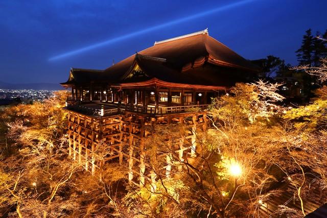 京都‧清水寺展開夜間特別參觀 時隔4年拆除屋頂覆蓋物