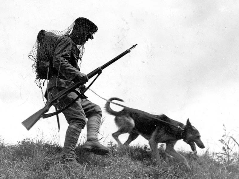 兵士と捜索に当たる、旧陸軍歩兵第37連隊(大阪市)所属の軍用犬=1933年。朝日新聞社データベースから