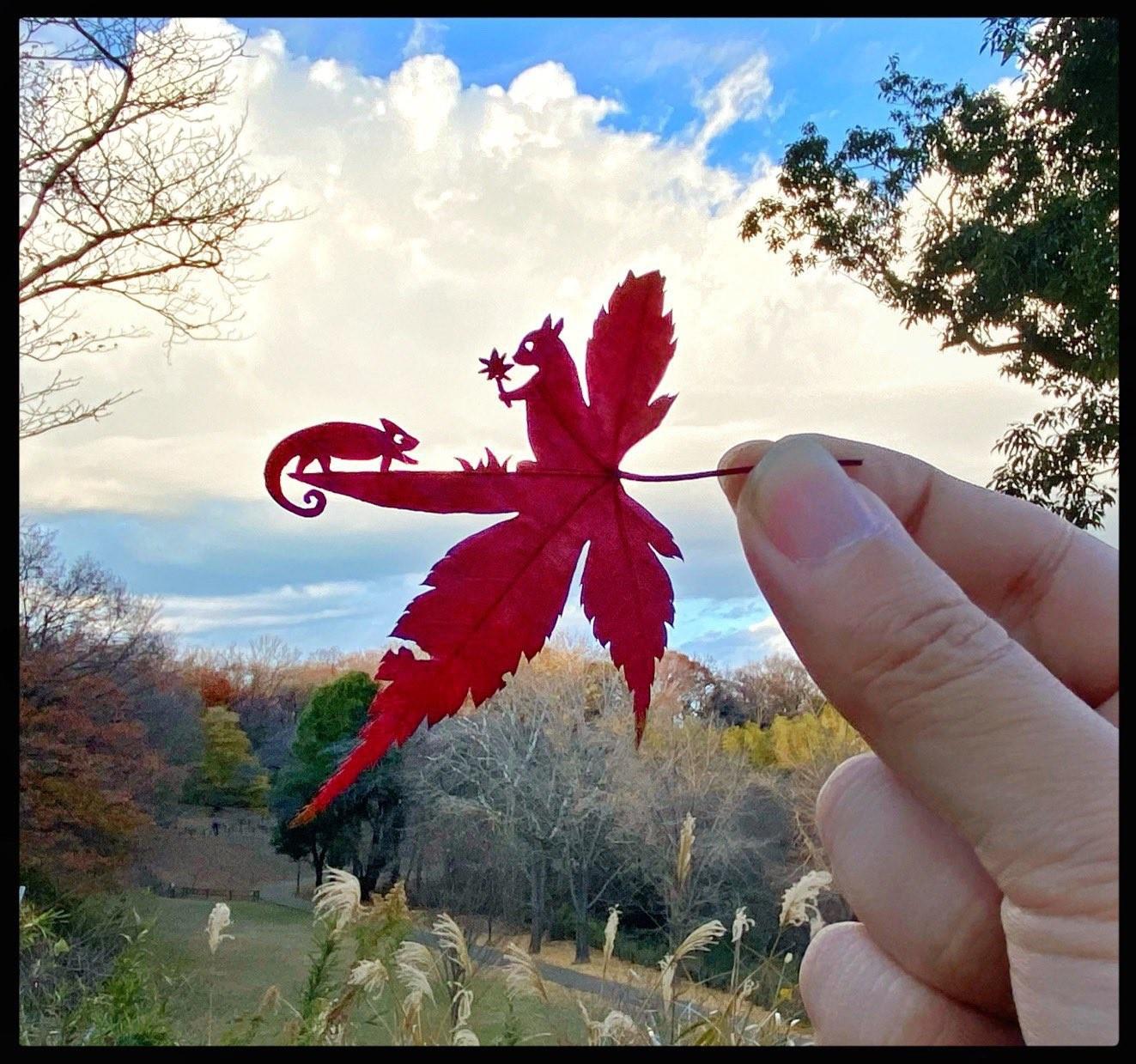 ADHDに気づいて人生が変わる…サラリーマンから、僕にしかできない「葉っぱ切り絵」の世界へ|まいどなニュース
