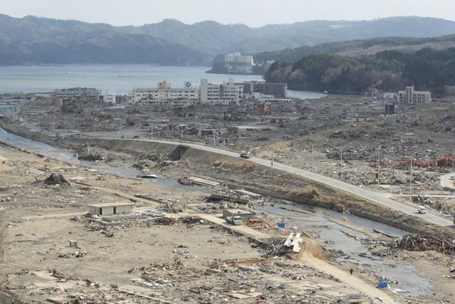 1・17と3・11、暖冬に二つの震災を思う―被災地への気持ちを胸に「想定 ...