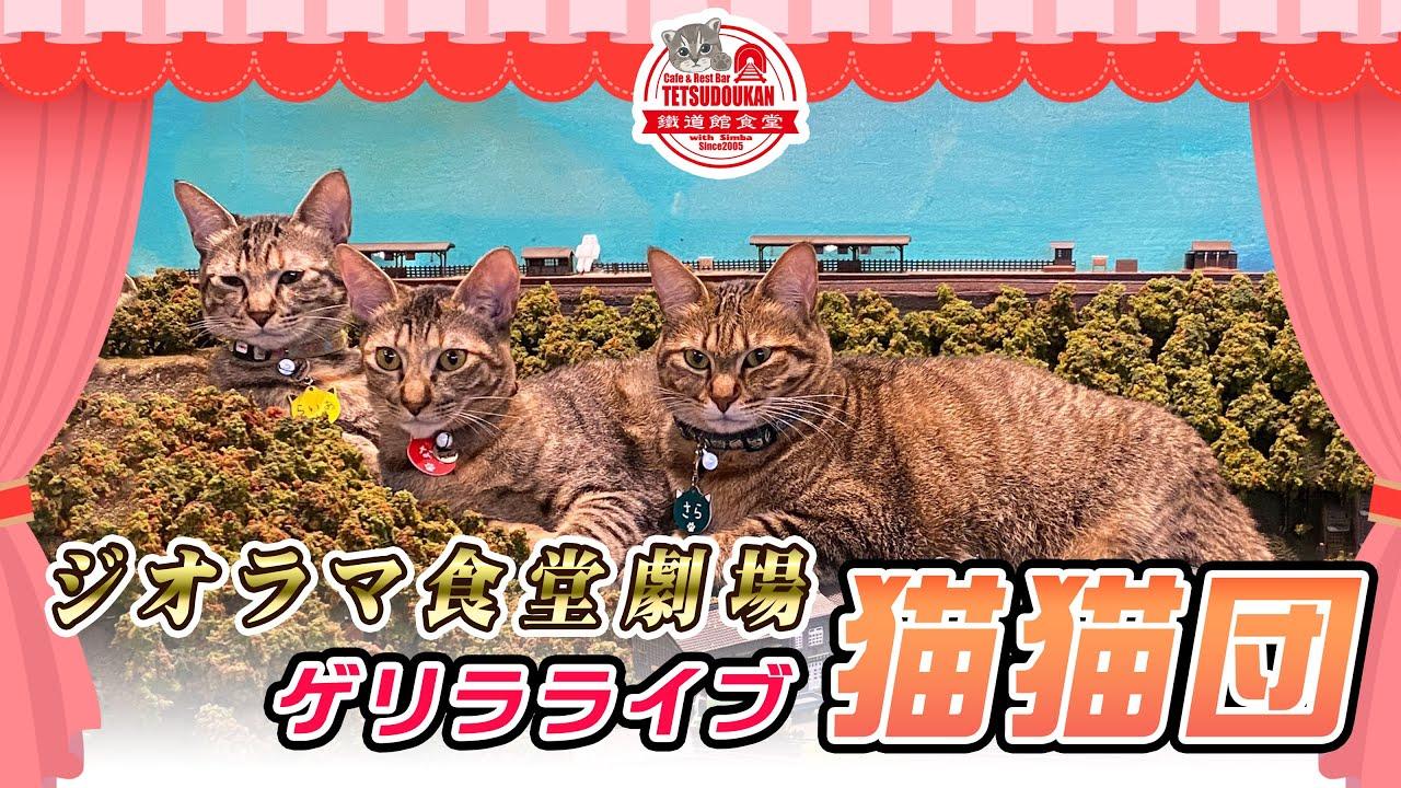 巨大猫が出現!鉄道が襲われた!? ジオラマを闊歩する保護猫親子に衝撃 コロナで経営危機の食堂も救う